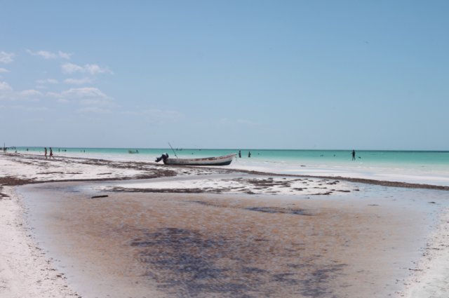 Friendly-Madrid-Playa-Holbox