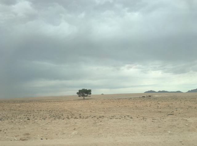 Friendly-Madrid-Namibia-Landscape
